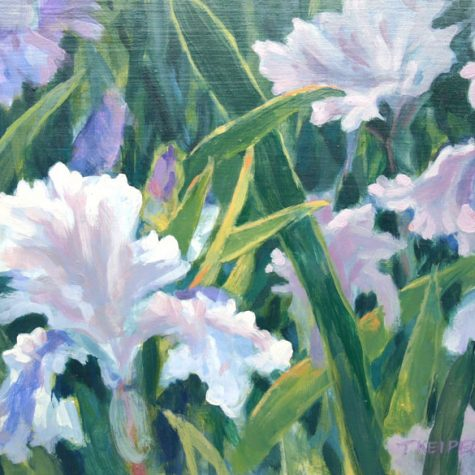 Afternoon Iris (Acrylic)