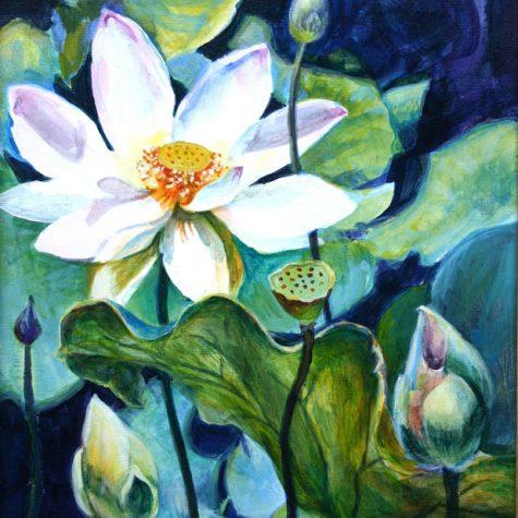 Lotus Cycle of Life (Acrylic)