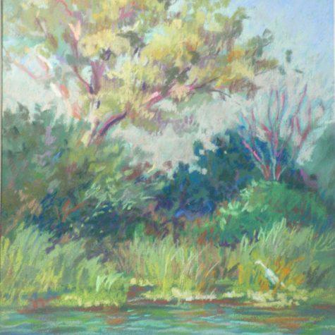 Delta Heron (Pastel)