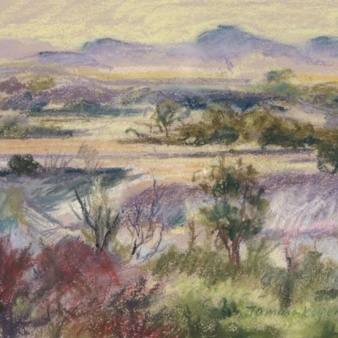 Valley Wetlands (Pastel)